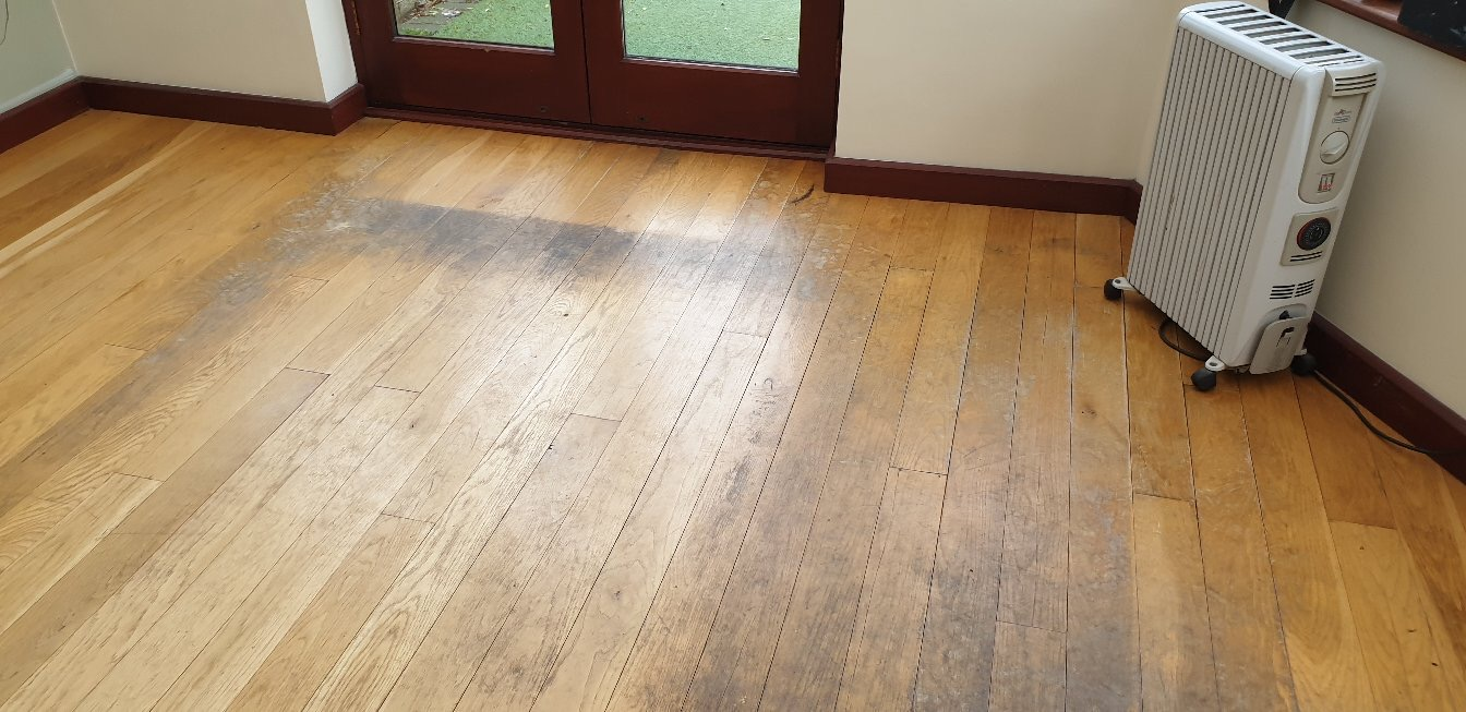 Water and Moisture Damage to Wood Floors.